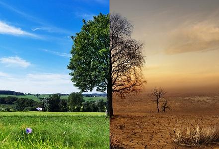 VSAO unterstützt Klima-Notruf